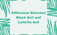Difference Between Black Soil and Laterite Soil