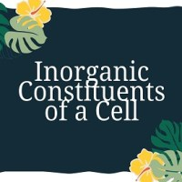 Inorganic Constituents of a Cell