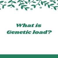 What is Genetic load?