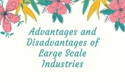 Advantages and Disadvantages of Large Scale Industries