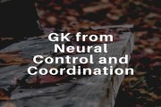 GK from Neural Control and Coordination