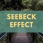 Seebeck Effect
