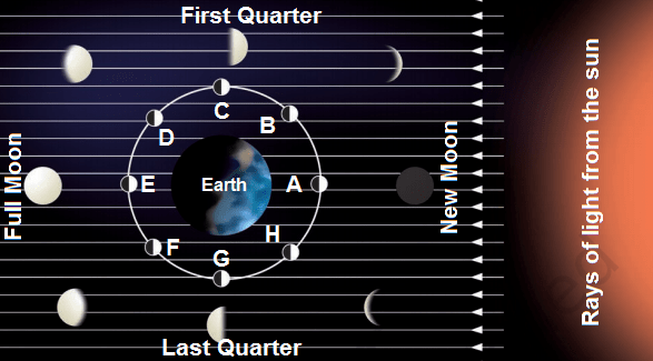 moon phases - Phases of Moon