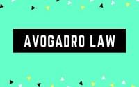Avogadro Law