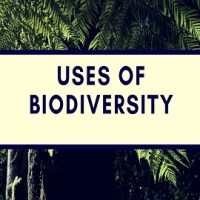 Uses of Biodiversity or Benefits of Biodiversity or Value of Biodiversity