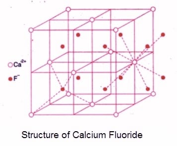 structure of calcium fluoride - Structures of Simple Ionic Compounds