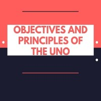 Objectives and Principles of the UNO