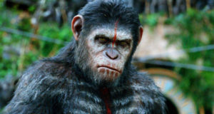 Evolutionists Yearn to Merge Cannibalistic Chimpanzees With Humans