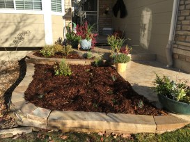 CO Buff Flagstone wall planters in Erie, CO.