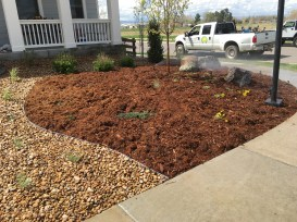 Front yard converted from grass to perennial garden with moss rock boulders in Erie, CO