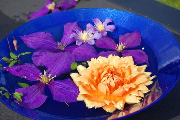 skål i blått med och utan orange (2)
