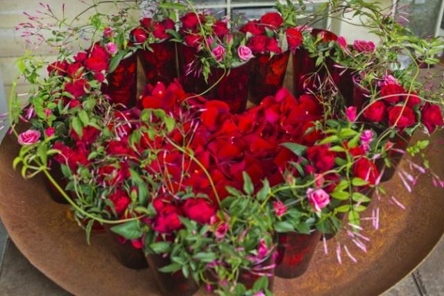 Alla Hjärtansdukning i rött Bild FloraDania m Jasminum polyanthum