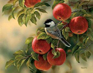 Äpplen fågel
