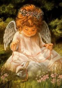 Ängel söt kanin natur