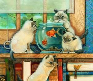 Katter fiskar
