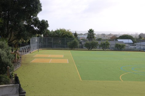 All-weather turf options
