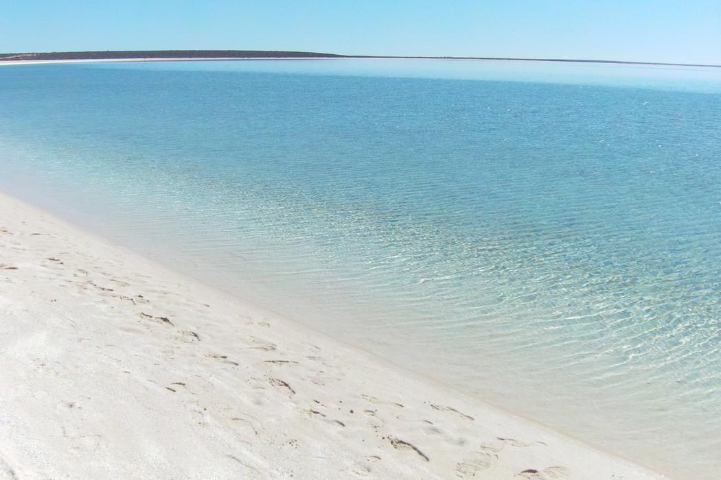 plage-australie-shell-beach02