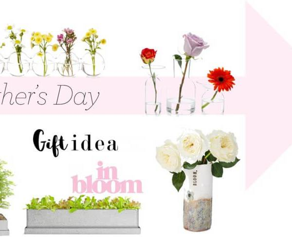 Uncommon Mother's Day Gift Guide