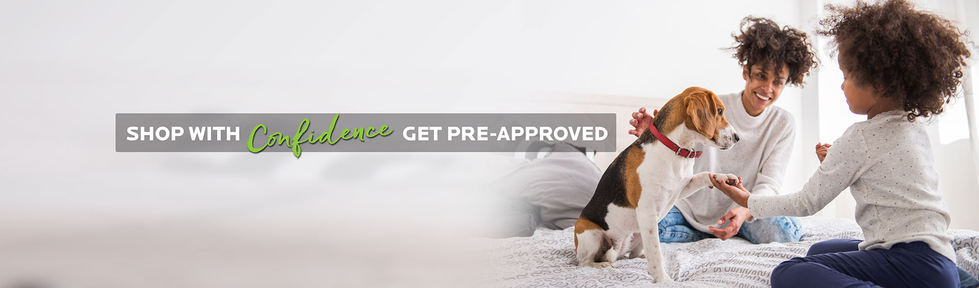 Financing – Glamorous Puppies Miami
