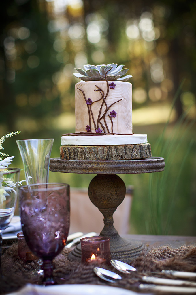 rustic cake | Mischa Photography | Glamour & Grace