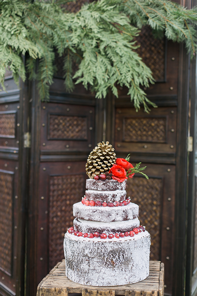 rustic winter wedding cake | Whimsie Photo and Video | Glamour & Grace