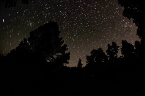 The night sky at our campsite, RMNP.