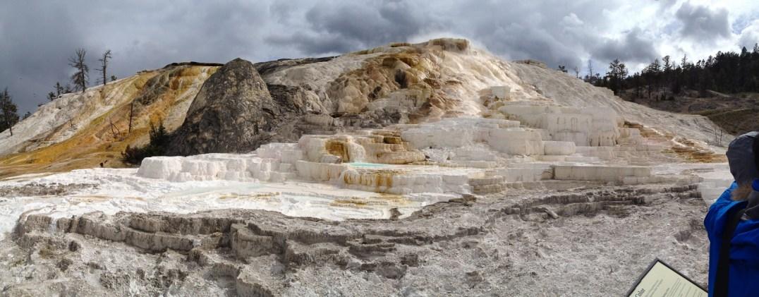 Mammoth Hot Springs, YNP.