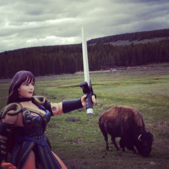 Xena, guarding the bison.