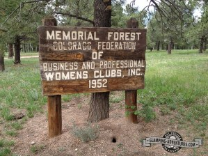 Memorial (Womens) Forest Trail, Divide, CO