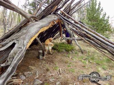 Really cool shelter along the Colorado Trail. Kenosha Pass, CO