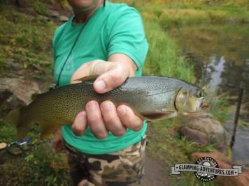 Natasha's nice brown trout. :) Sylvan Lake S.P.