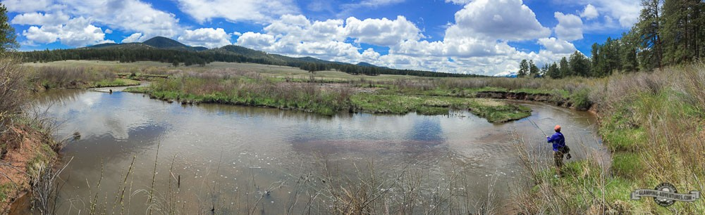 Trout Creek, tailwaters.