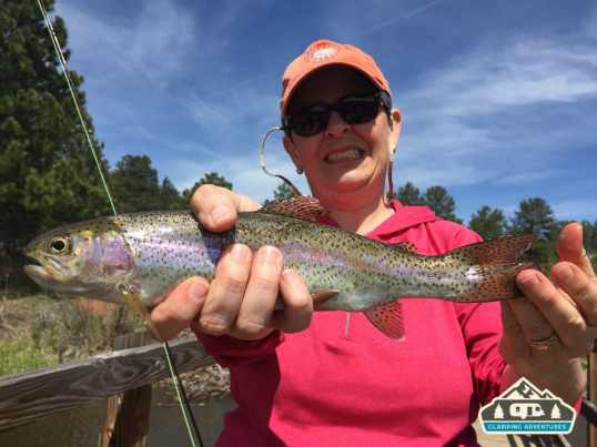 Lots of pretty Rainbow Trout! Manitou Recreational Area, CO.