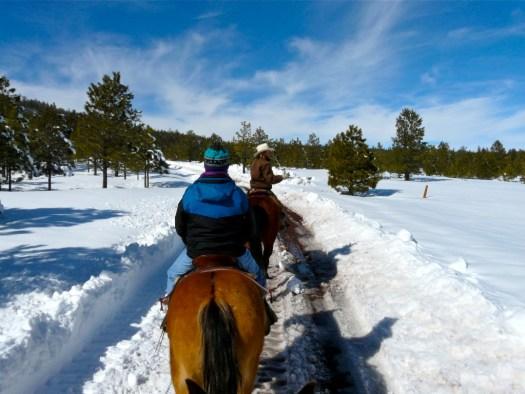 horseback-riding-snow