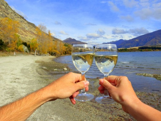 15-Lake Wanaka Picnic -HoneyTrek