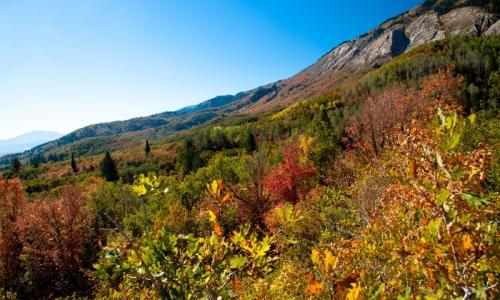 5079_8954_Park_City_Utah_Hiking_md