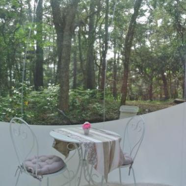 Vue de la forêt depuis l'intérieur de la Bulle au glamping Lo Rey du Lac à Hossegor en Aquitaine