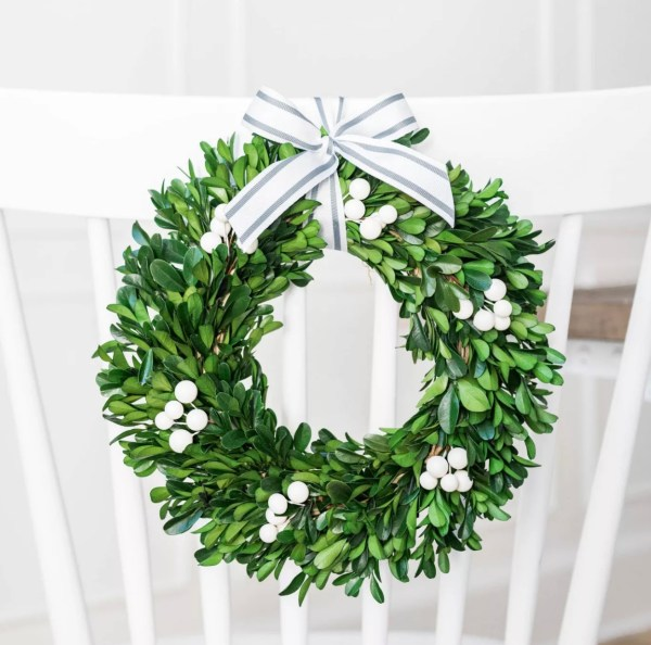 Sugar paper preserved boxwood wreath