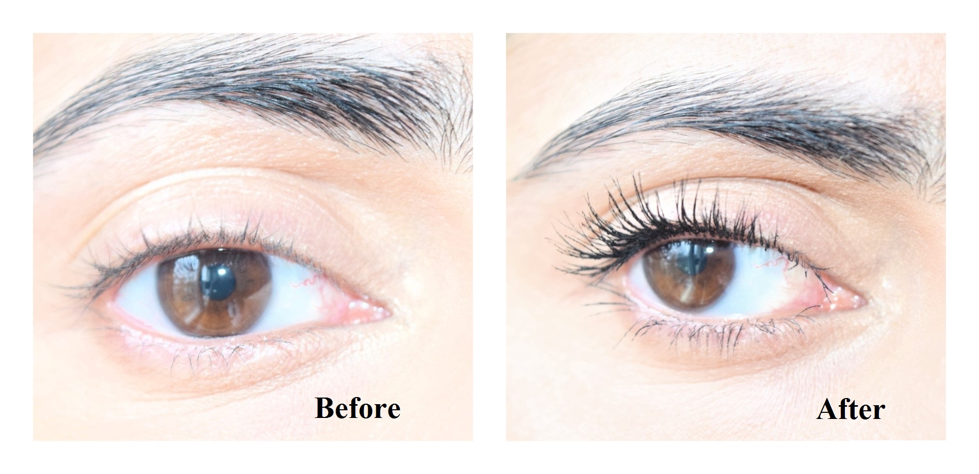 0cfca665ee4 Loreal Voluminous Butterfly Intenza Waterproof Mascara Review and Before  After Pictures. Loreal False Lash Schmetterling Intenza Matte-Black ...