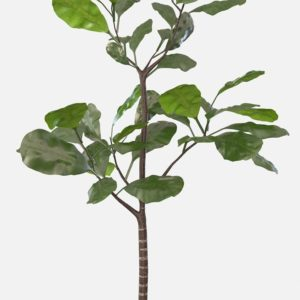 Faux Potted Fiddle Leaf Tree Pottery_Barn