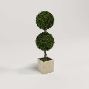 Boxwood Double Topiary Outdoor Decoration