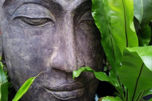 Mindfulness voor huisartsen