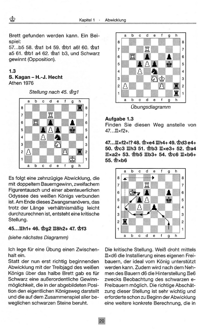 Leseprobe aus: Hans-Joachim Hecht: Königswege im Schach - Der Endspiel-Ratgeber (Edition Olms)