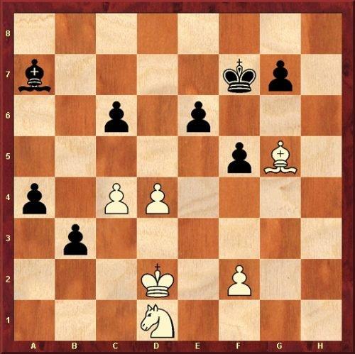 Mihai Neghina: Die Widerspenstige (Schachstudie)