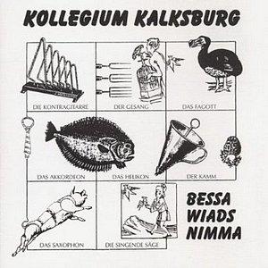 Das erste Kalksburg-Album 1997: «Bessa wiads nimma»