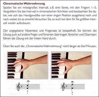"""Leseprobe 1 aus """"Musiker in Bewegung"""": """"Chromatische Wahrnehmung"""""""