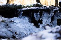 Foersterteiche_Wasserfall_00001