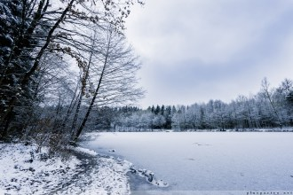Foersterteiche_im_Winter_00003