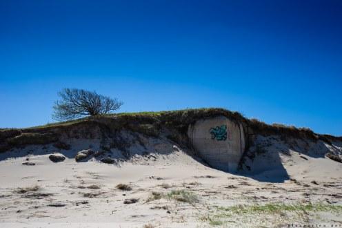Geocaching, Wald, Dänemark, Fanö, Fano, Danmark, Geocache, Wandertour, wandern, Natur, Fotografie, Landschaft, Urlaub, Bunker