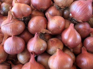 Shallots, Garlic & Onions